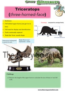 Triceratops card online